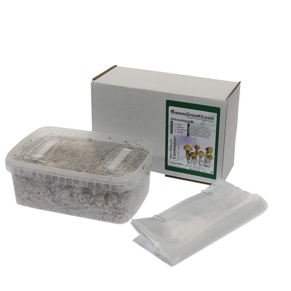 Cambodian Psilocybe Cambodiescens Magic Mushroom Grow kit (Medium - 1200cc)