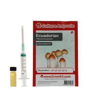 Ecuadorian Spore Syringe Stropharia Cubensis Culture Ampoule Magic Mushroom Spores