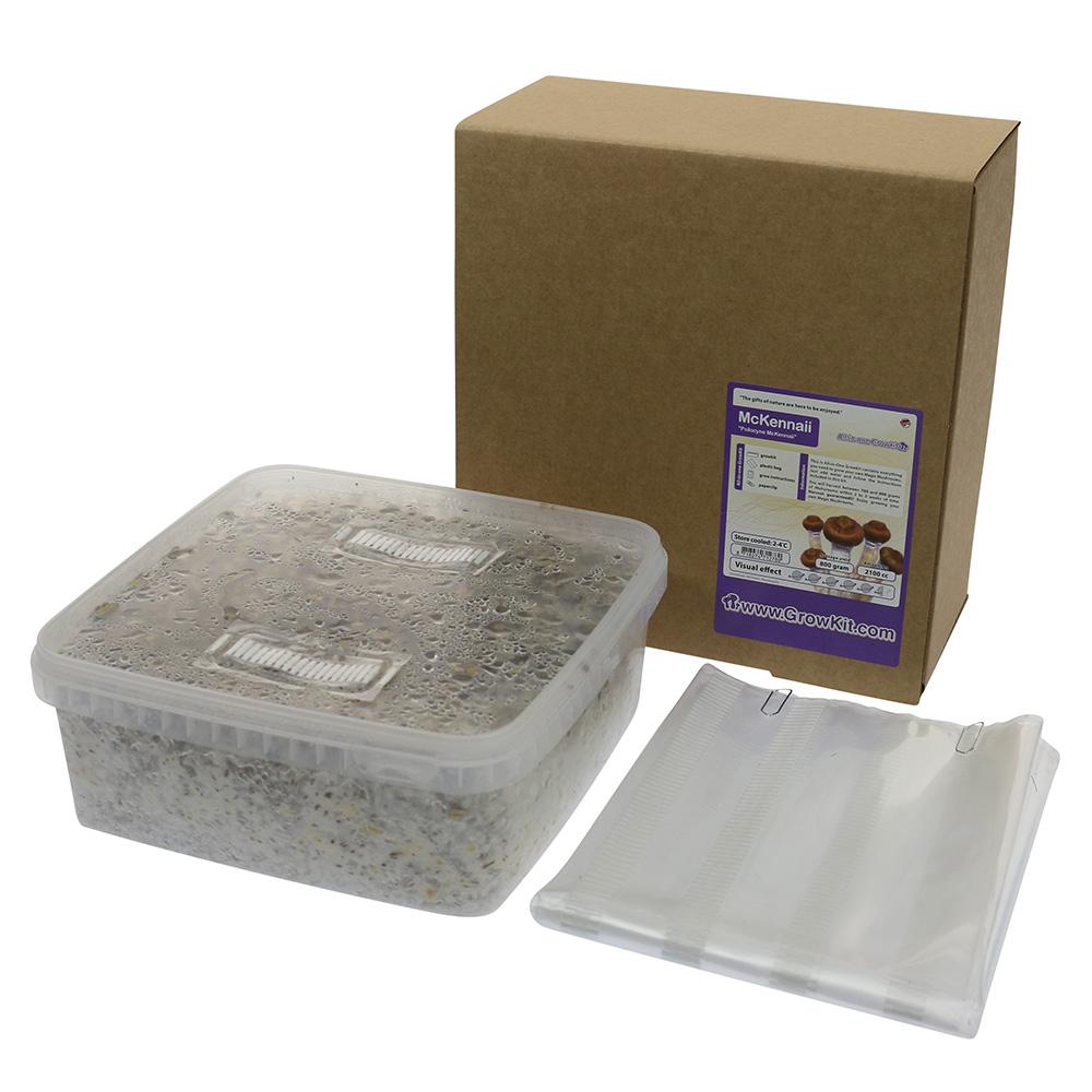 McKennaii Psilocybe McKenaii Magic Mushroom Grow kit (Large - 2100cc)