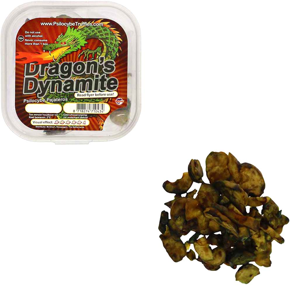 Dragons Dynamite Psilocybe Pajateros Magische Truffels smartific.com