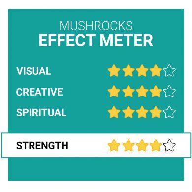 MushRocks Magic Truffle Effects Smartific.com