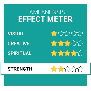 Tampanensis Magic Truffle Effects Smartific.com