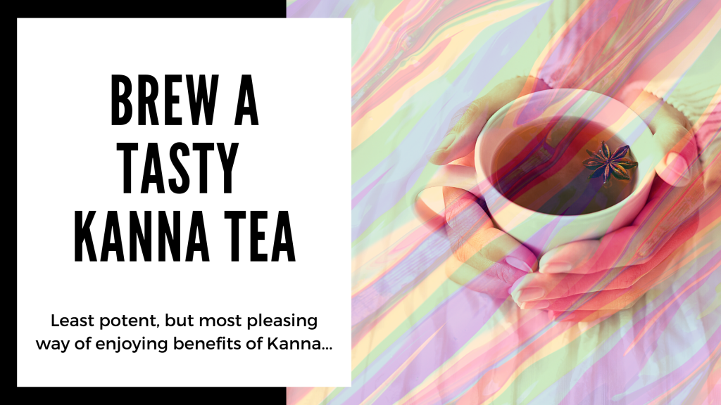 Everything You Need to Know About Kanna - make a tasty kanna tea - Smartific blog