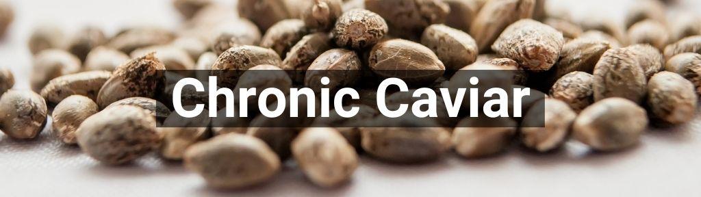 ✅ All high-quality Chronic Caviar from Smartific.com