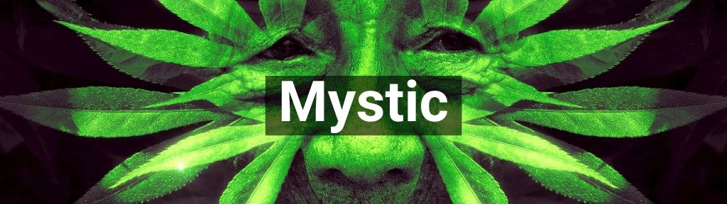 ✅ All high-quality Mystic from Smartific.com