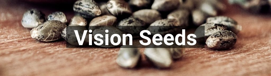 ✅ All high-quality Vision Seeds from Smartific.com