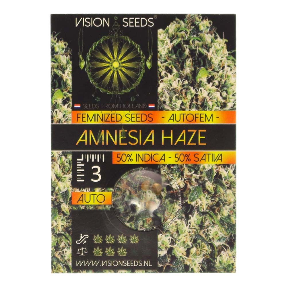 🌿 Vision Seeds Cannabis Seeds Auto AMNESIA HAZE Smartific 2014187