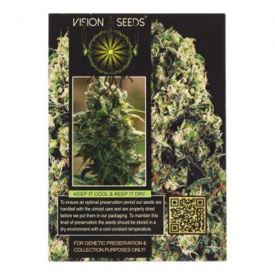 🌿 Vision Seeds Cannabis Seeds Auto AMNESIA HAZE Smartific 2014188/2014187
