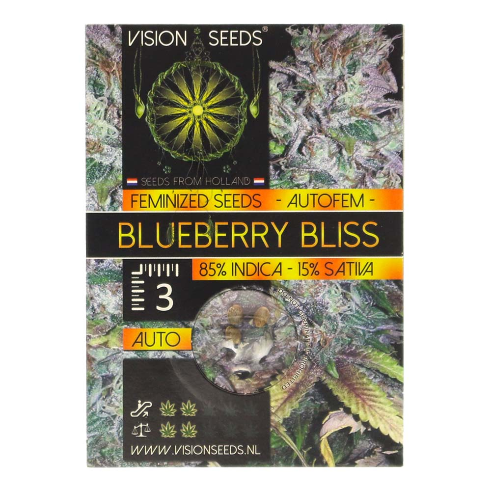 🌿 Vision Seeds Cannabis Seeds Auto BLUEBERRY BLISS Smartific 2014189