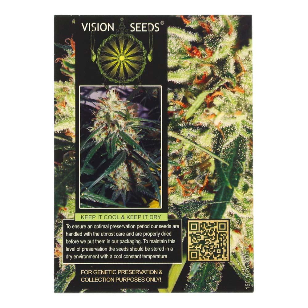 🌿 Vision Seeds Cannabis Seeds Auto DELHI CHEESE Smartific 2014194/2014193