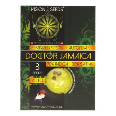 🌿 Vision Seeds Cannabis Seeds Auto DOCTOR JAMAICA Smartific 2014193