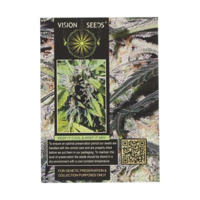 🌿 Vision Seeds Cannabis Seeds Auto LOWRYDER Smartific 2014198/2014197