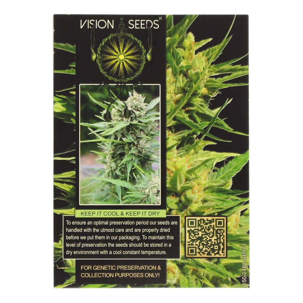 🌿 Vision Seeds Cannabis Seeds Auto NORTHERN LIGHTS Smartific 2014200/2014199