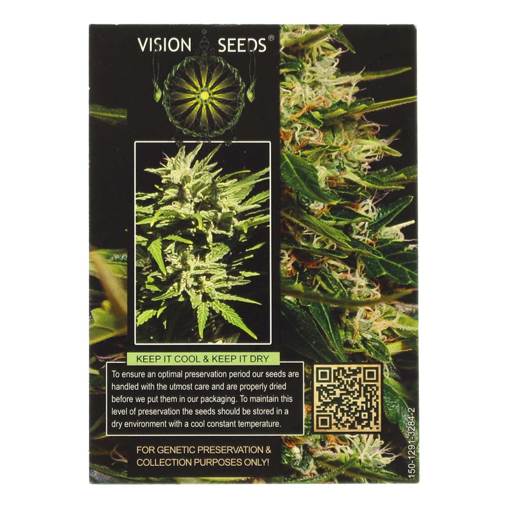 🌿 Vision Seeds Cannabis Seeds Auto SUPER SKUNK Smartific 2014202/2014201