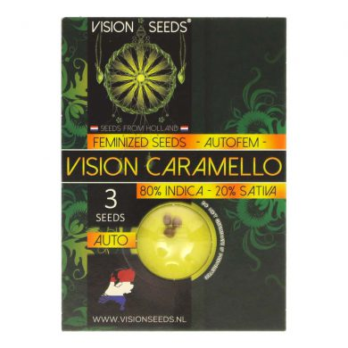 🌿 Vision Seeds Cannabis Seeds Auto VISION CARAMELLO Smartific 2014203
