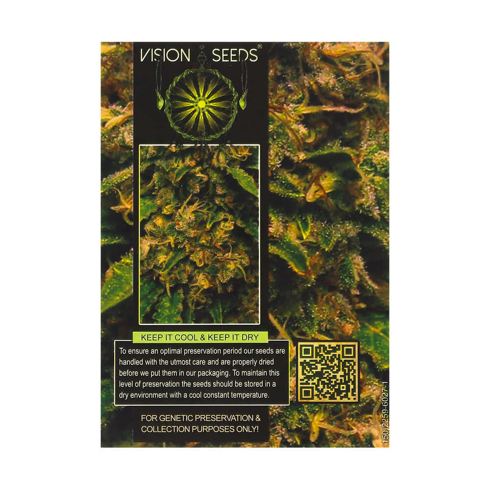 🌿 Vision Seeds Cannabis Seeds Auto VISION CRITICAL Smartific 2014206/2014205