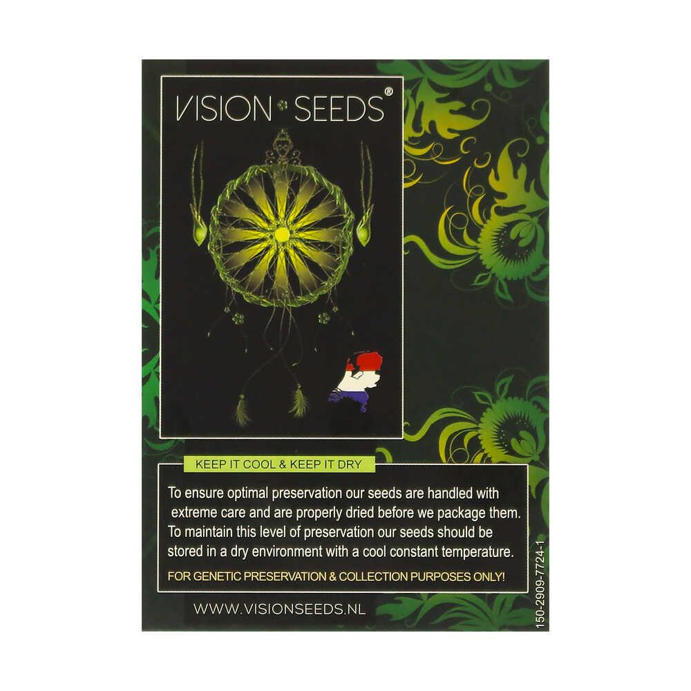 🌿 Vision Seeds Cannabis Seeds Auto VISION GELATO Smartific 2014208/2014207