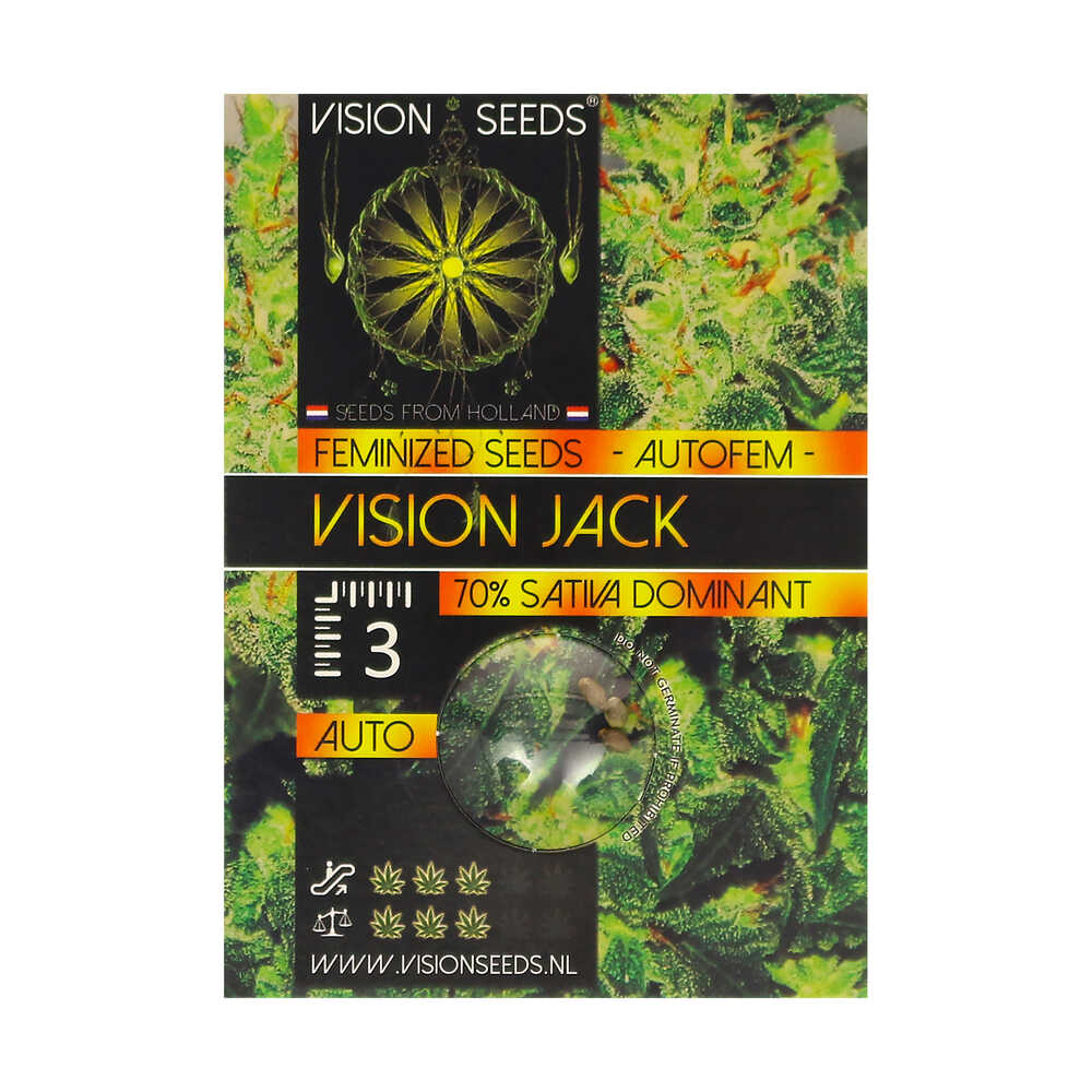 🌿 Vision Seeds Cannabis Seeds Auto VISION JACK Smartific 2014211