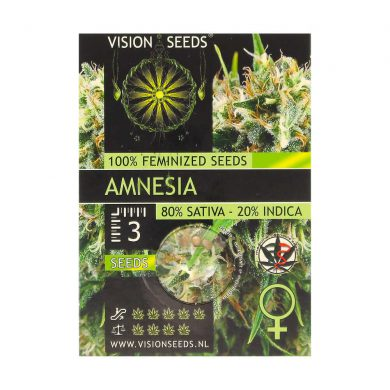 🌿 Vision Seeds Feminized Cannabis Seeds AMNESIA Smartific 2014219