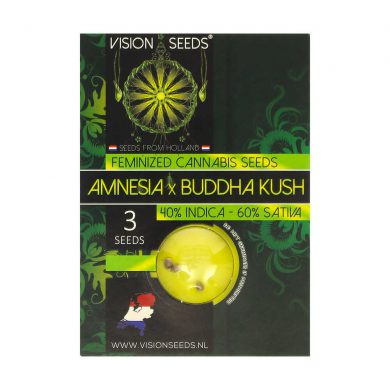 🌿 Vision Seeds Feminized Cannabis Seeds AMNESIA X BUDDHA KUSH Smartific 2014221