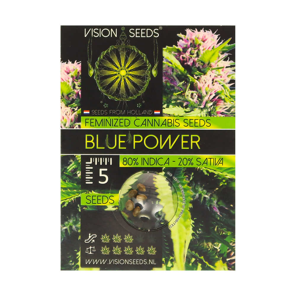 🌿 Vision Seeds Feminized Cannabis Seeds BLUE POWER Smartific 2014226