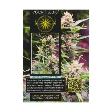 🌿 Vision Seeds Feminized Cannabis Seeds BONA DEA (CBD+) Smartific 2014228/2014227