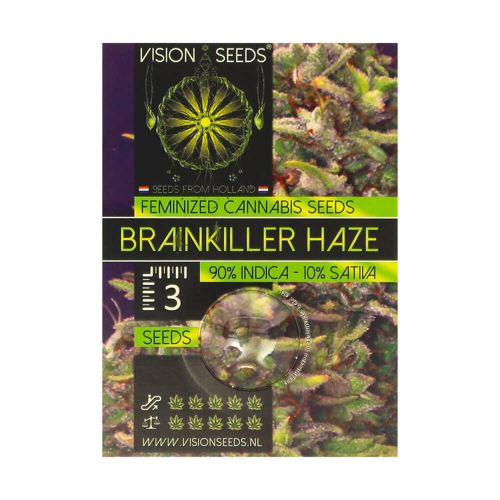 🌿 Vision Seeds Feminized Cannabis Seeds BRAINKILLER HAZE Smartific 2014229