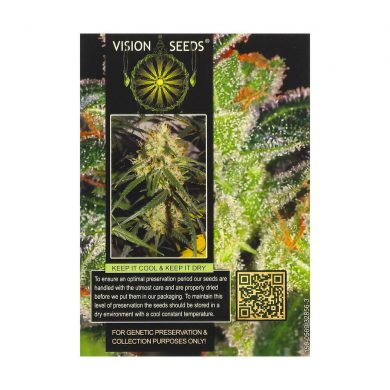🌿 Vision Seeds Feminized Cannabis Seeds CHEESE Smartific 2014234/2014233