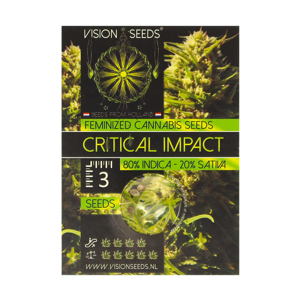 🌿 Vision Seeds Feminized Cannabis Seeds CRITICAL IMPACT Smartific 2014237