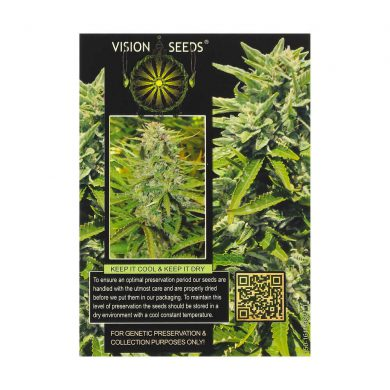 🌿 Vision Seeds Feminized Cannabis Seeds CRYSTAL QUEEN Smartific 2014240/2014239