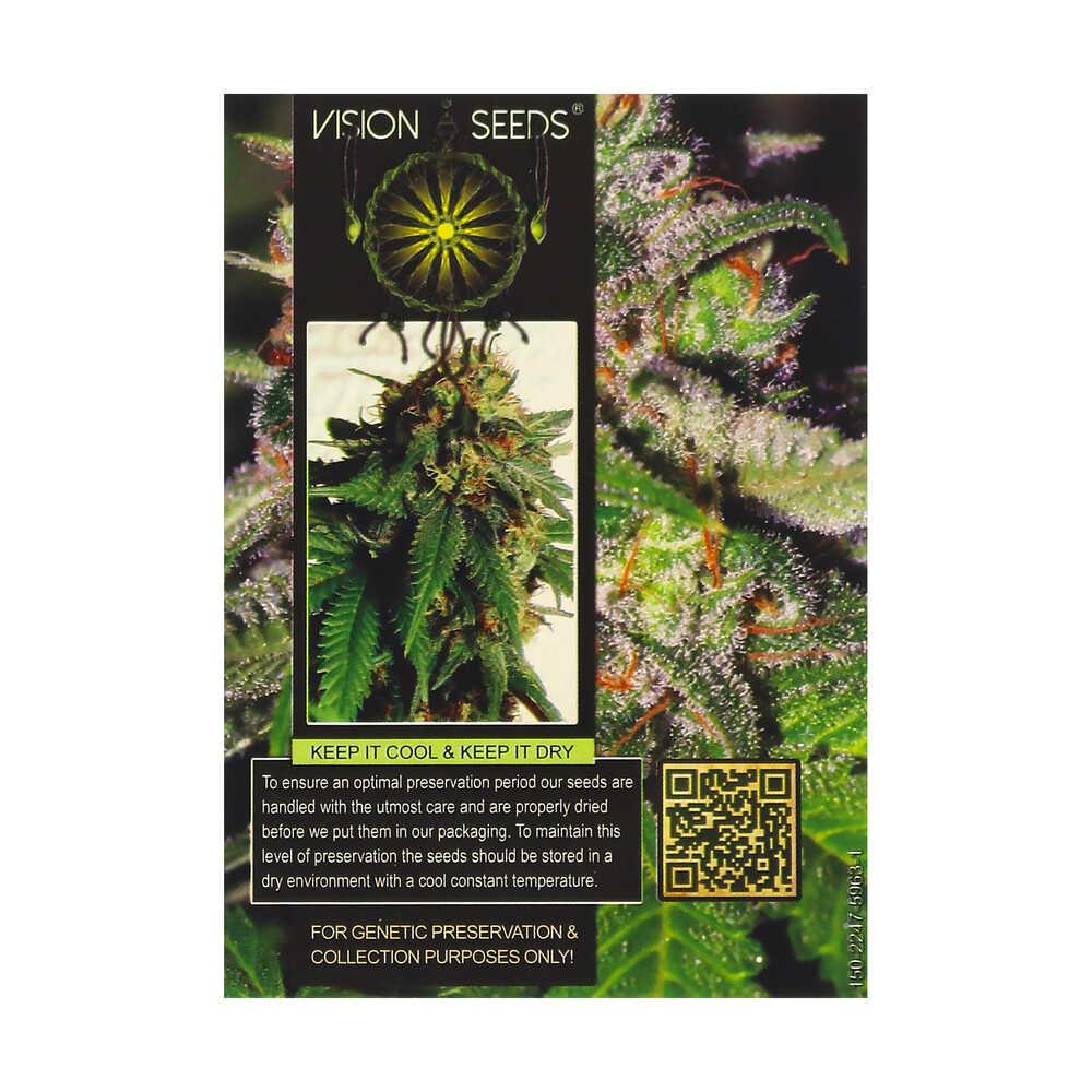 🌿 Vision Seeds Feminized Cannabis Seeds DOCTOR JAMAICA Smartific 2014244/2014243