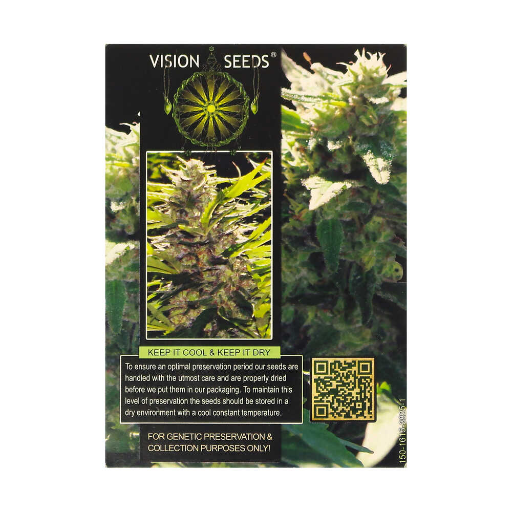 🌿 Vision Seeds Feminized Cannabis Seeds LA BLANCA GOLD Smartific 2014248/2014247