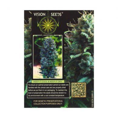 🌿 Vision Seeds Feminized Cannabis Seeds SILVER HAZE Smartific 2014266/2014265