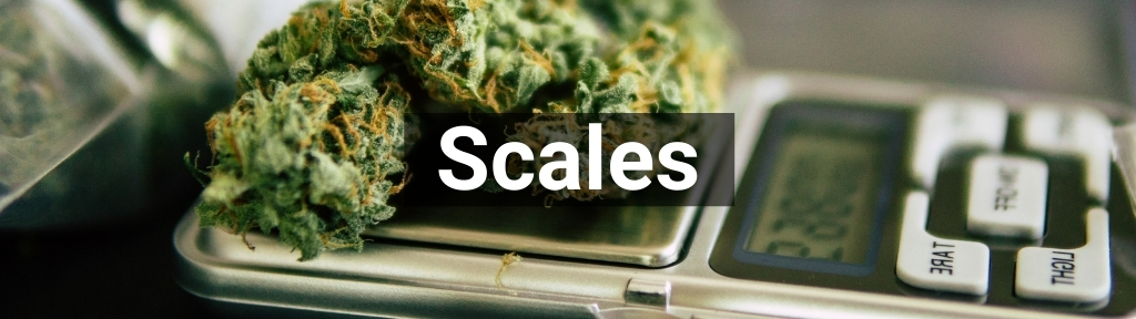 ✅ All high-quality Scales from Smartific.com