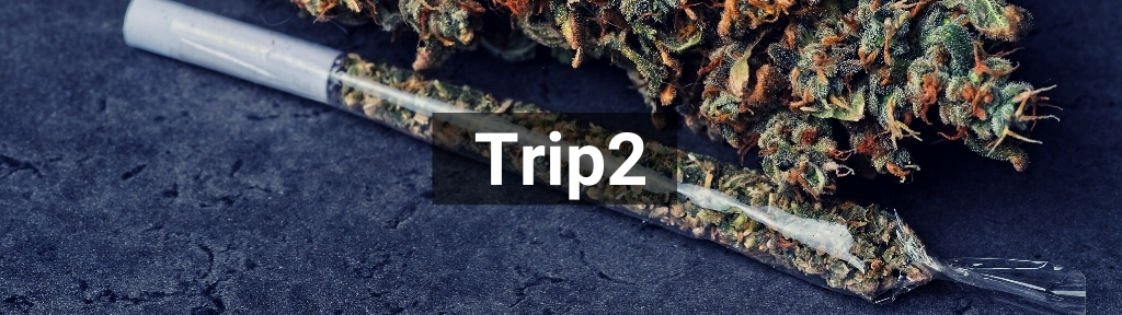 ✅ All high-quality Trip2 products from Smartific.com