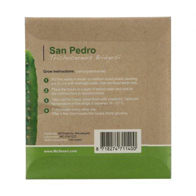 🧐 San Pedro Seeds (Trichocereus Bridgesii) Smartific 8718274711400