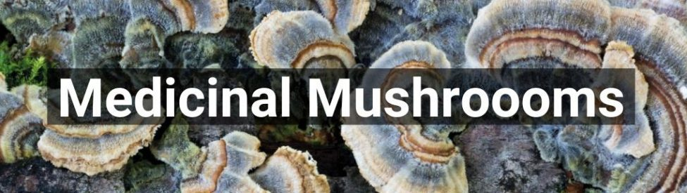 ✅ All high-quality Medicinal Mushrooomsproducts from Smartific.com