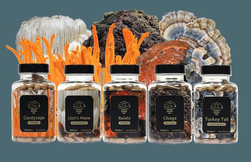 best medicinal mushrooms