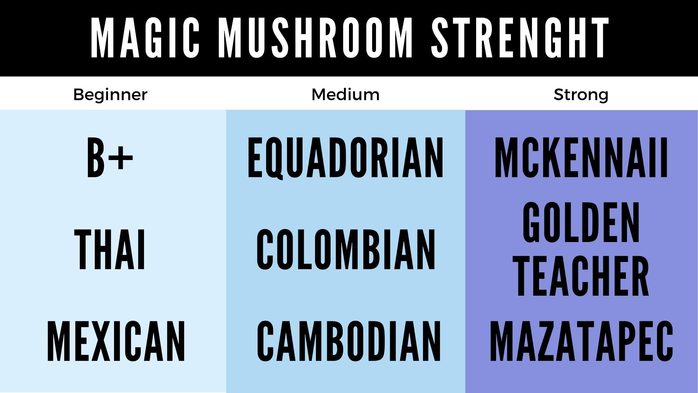 Magic Mushroom Grow Kit strength chart for beginners, medium and strong magic mushrooms