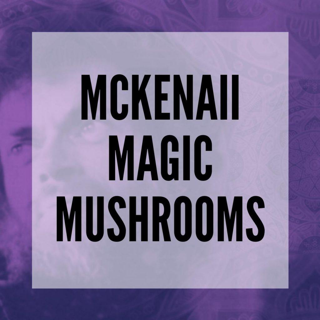 McKennaii magic mushrooms