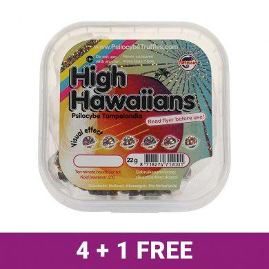 High-Hawaiians-4+1-free-deal