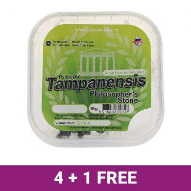 Tampanensis-4+1-Free-deal